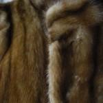 ぱど7/21号に高校を掲載『毛皮買取致します』暑い夏、今こそ冬物整理しませんか。樟葉駅前で高価買取リサイクル『質はしもと(有)橋本質店』