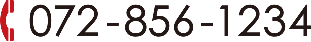 072-856-1234